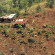 Small Country Farm on a hill, Rwanda