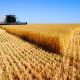 Advantage Capital harvests and sells crop waste
