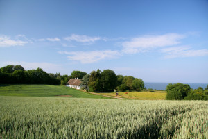 Old farmhouse, beautiful fields and sea on island Als in Southern Jutland Denmark. From same place: