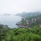 Decline of fishery resources, China zhejiang shengsi shengshan Island fishermen have relocated and become a ghost village, the abandoned houses covered with green plants,